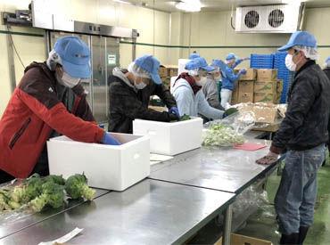 株式会社菜果野アグリ福岡の画像・写真