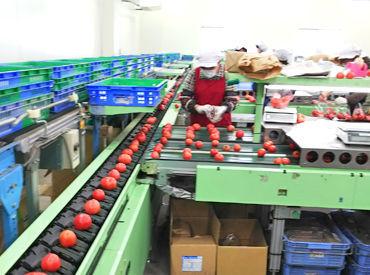 農事組合法人 埼玉産直センターの画像・写真