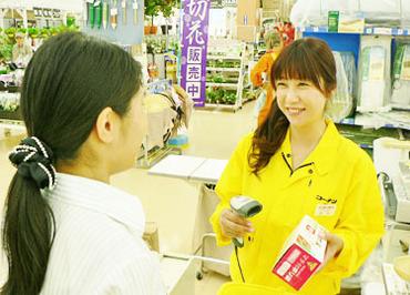 ホームセンターコーナン鎌倉大船店の画像・写真