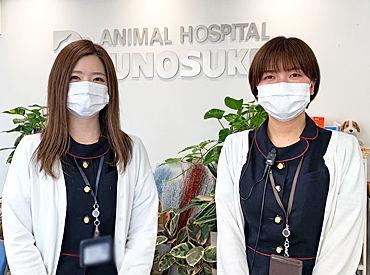 竜之介動物病院の画像・写真