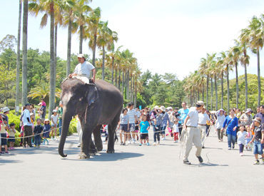 宮崎市フェニックス自然動物園管理株式会社の画像・写真