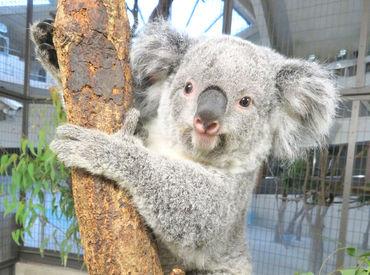 多摩動物公園 (公益財団法人東京動物園協会)の画像・写真