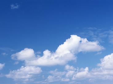 株式会社e-roofの画像・写真