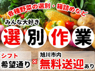 株式会社トライアングル・ジャパンの画像・写真